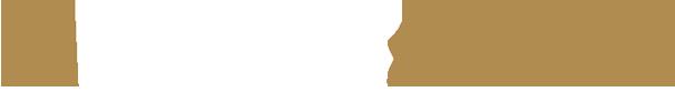 logo-store-bfr